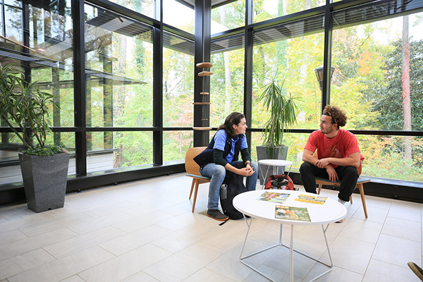 two students sit and talk in a room with glass walls on a bright sunny day