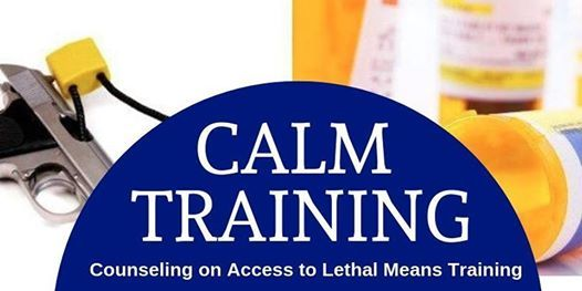 counseling on access to lethal means training (opens new window)